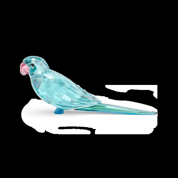 قطعة زينة Paco بتصميم ببغاء الباراكيت، لون أزرق، Jungle Beats
