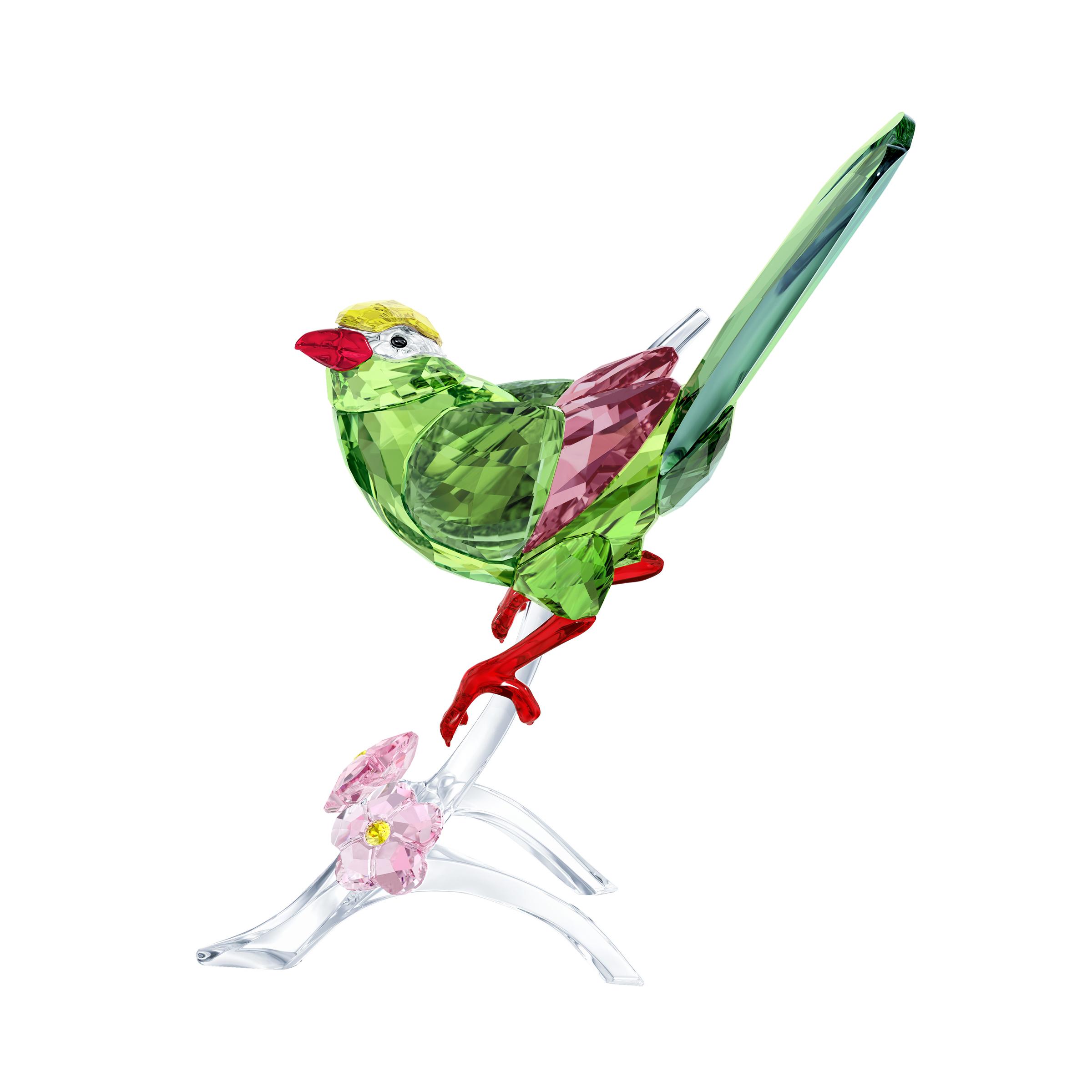 عقعق أخضر